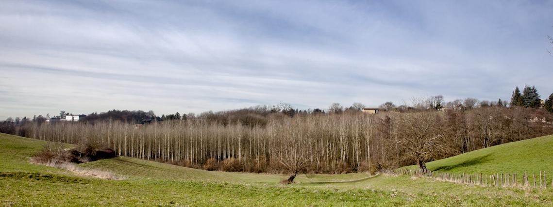 http://neuroptyk.com/files/gimgs/42_sparterie---arnaud-thomas---paysage-david-besson-1.jpg